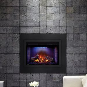 Napoleon Cinema Fireplace Insert or Builtin or Mantel Package